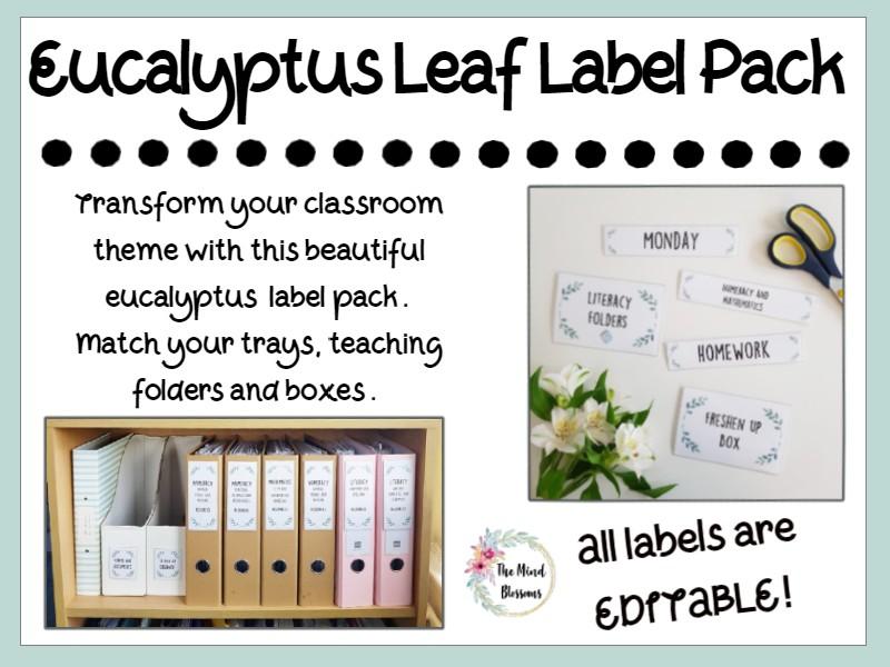 Eucalyptus Classroom Label Signs Pack EDITABLE