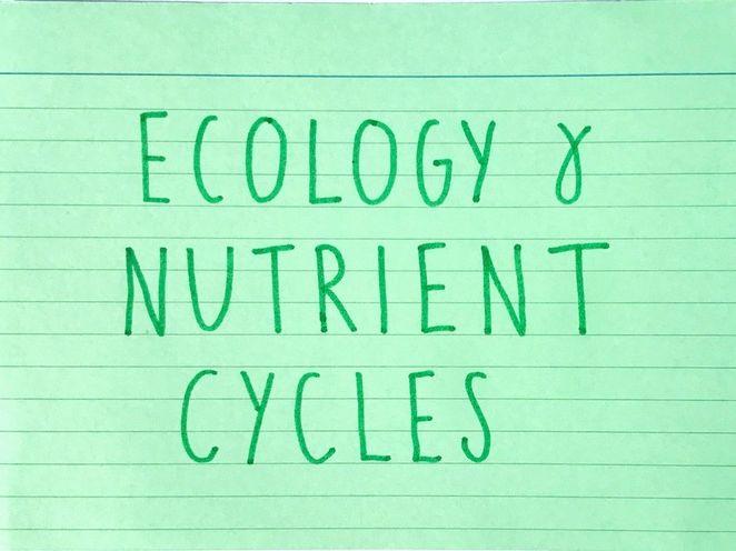 Ecology & Nutrient Cycles - Biology GCSE (1-9) Edexcel
