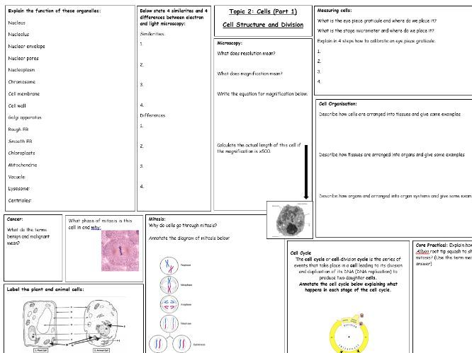 AQA A level Biology - Topic 2: Cells part 1 revision sheet