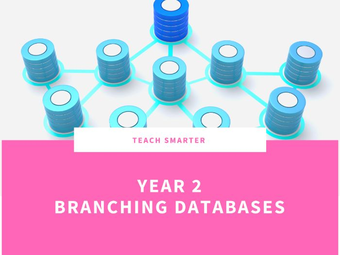 Year 2 branching Databases