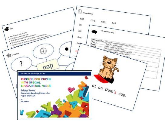 Bridge Books - Decodable Reading Primers for Pupils with SEN - PhonicsforSEN