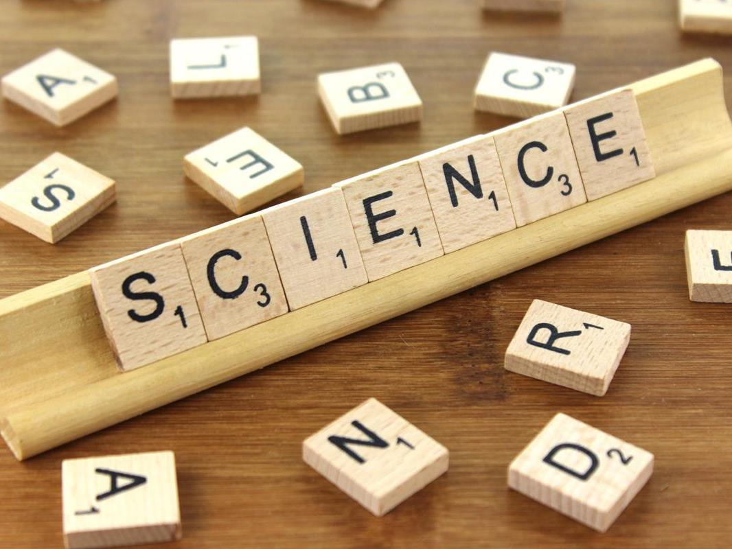 GCSE Biology, Physics and Chemistry 6 mark answers