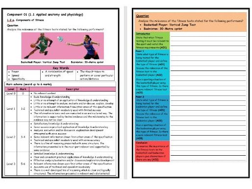 GCSE PE - OCR (9-1) - Structure Strip - Fitness Testing 1 - Extended Question Worksheet