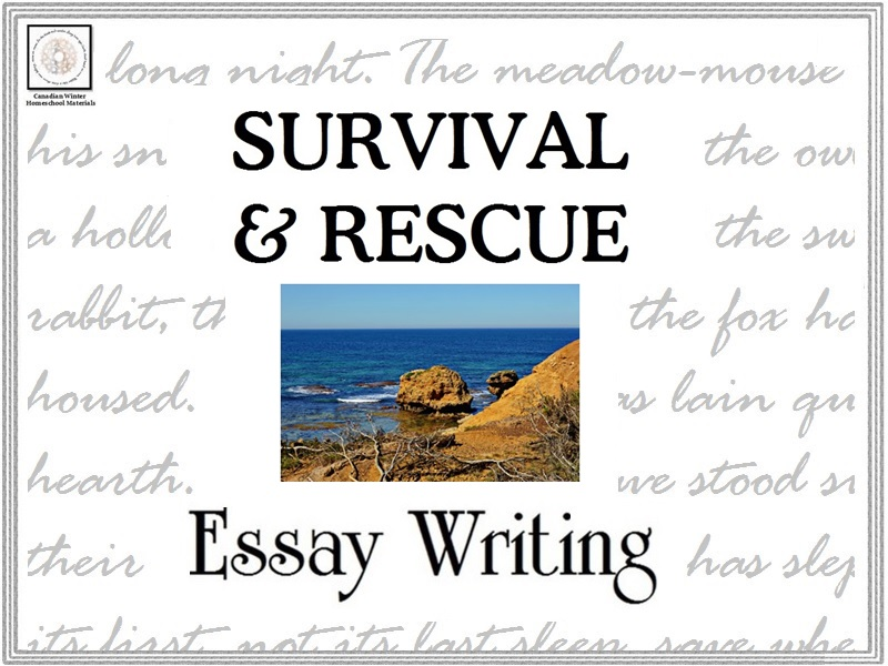 Essay Writing: Survival & Rescue