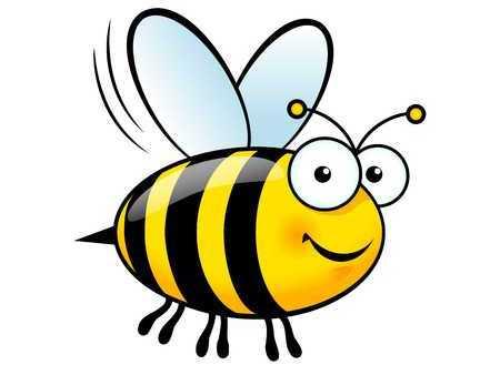 How bees make honey!
