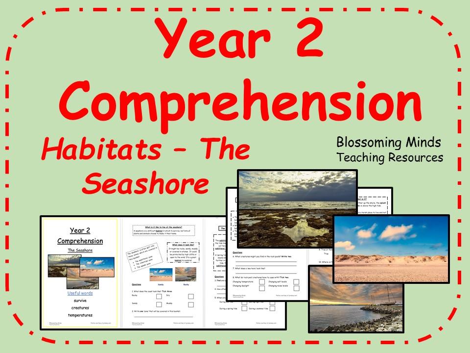 Year 2 Reading Comprehension - The Seashore (Habitats)