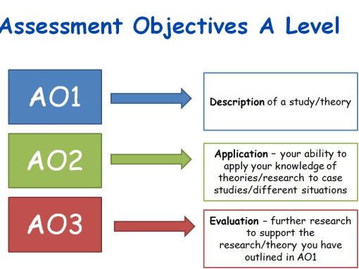 Psychology A-level approaches essays.