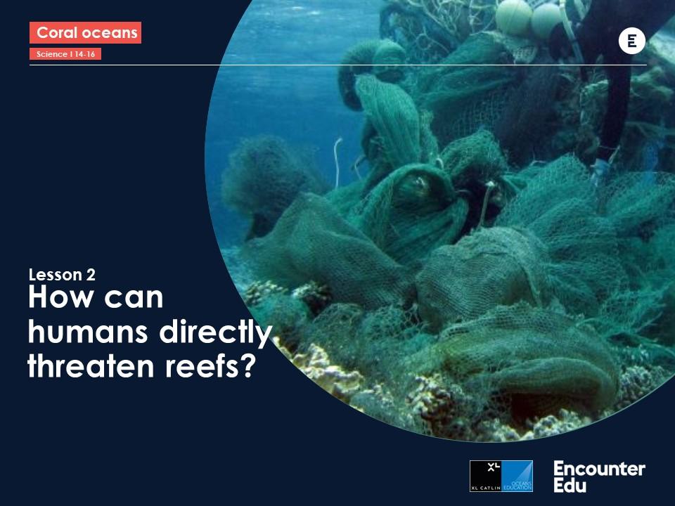 Human impact Science GCSE: Coral Case Study