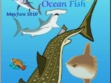 """Ocean Fish"" Art & Nature Science Unit"