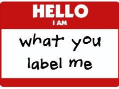Teacher labelling task