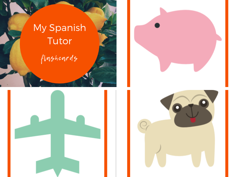 Flashcards - Pets, Colours, Countries Farm Animals, Transport, Weather & mi mochila