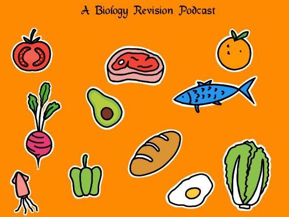 Human Nutrition Part 1 (IGCSE/GCSE) worksheet