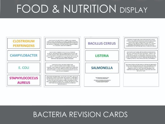 Food & Nutrition - GCSE Revision - Bacteria Revision Cards