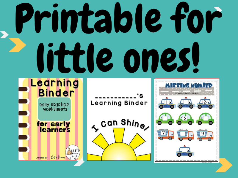 Learning Binder for Early Learners (Daily Practice Worksheets)