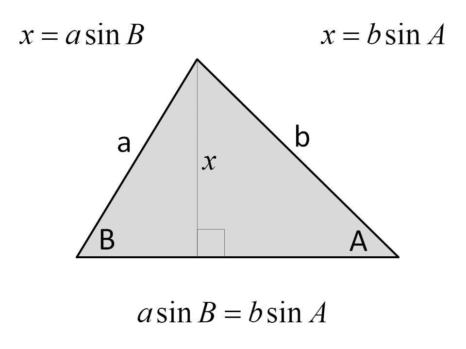 Introduction to the sine rule