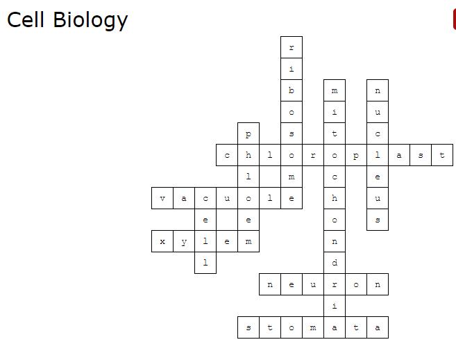 Cell Biology Crossword