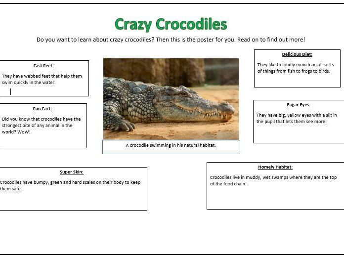Animals Non Chronological Report Planning KS1 - T4W
