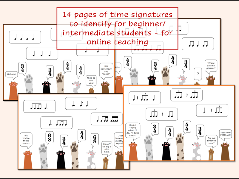 Music Time Signature Cats and Dogs Resource