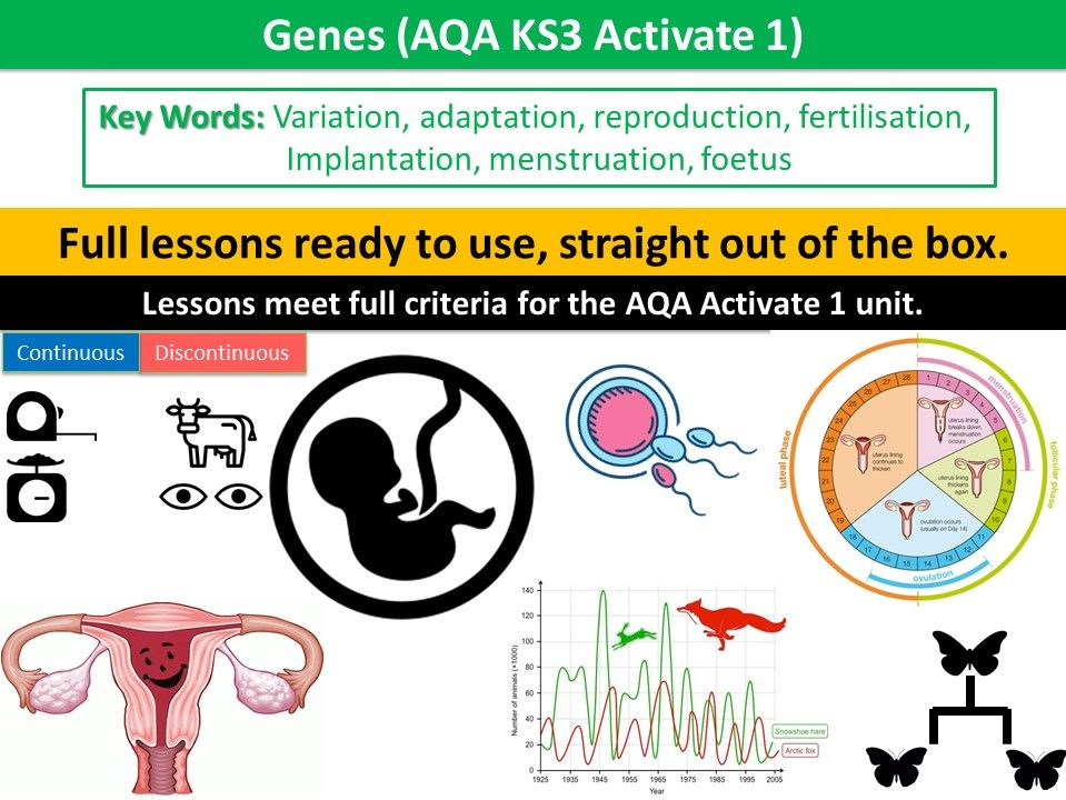 Genes (AQA KS3 Activate 1)