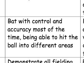 Self Assess Cricket Resource