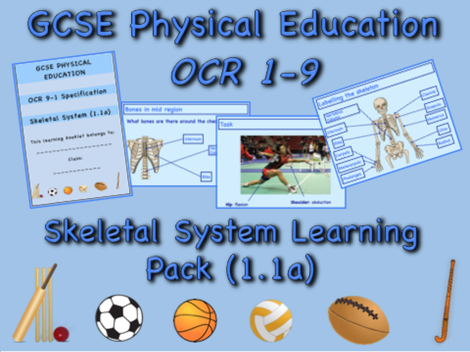 Skeletal System GCSE OCR PE (1.1a) Complete Learning Pack