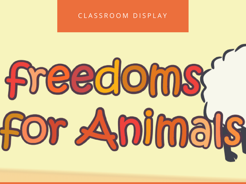 Five Freedoms for Animals Class Poster