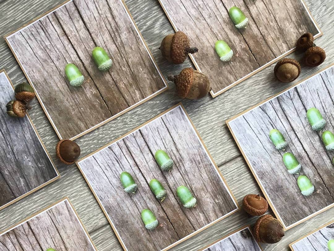 Acorn counting cards