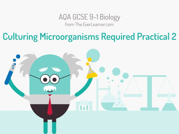 AQA GCSE 9-1 Biology: Culturing Microorganisms Required Practical 2