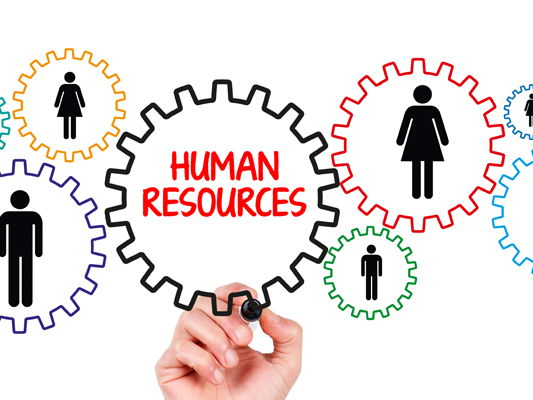Human resource planning- Crossword