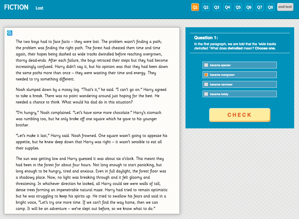 Lost - Interactive Exercise - Year 5 Reading Comprehension (Fiction)
