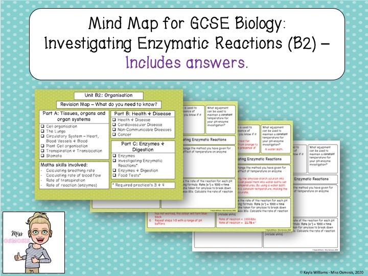 GCSE Biology Revision: Investigating Enzymes