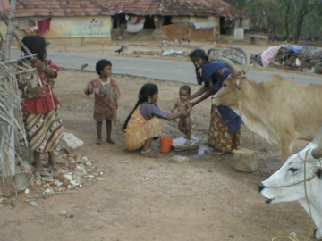 Tamil Nadu, India: Photo Collection