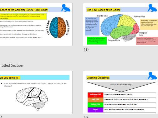 GCSE AQA Psychology (9-1) Development Lessons