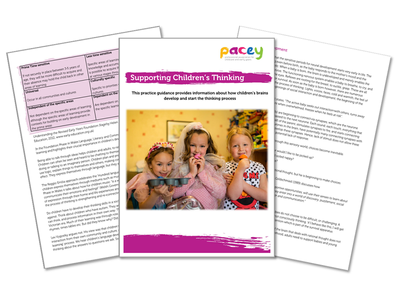 Supporting children's thinking ¦ Early years practice guide