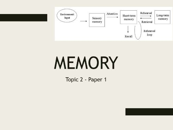 AQA A Level Psychology - Paper 1 Topic 2: Memory