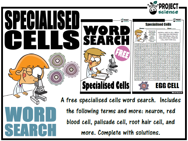 Specialised Cells Word Search