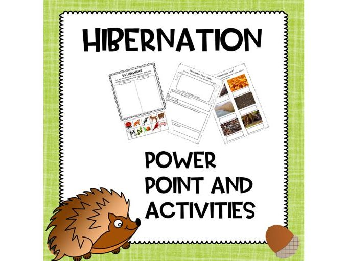 Hibernation Powerpoint and Activities