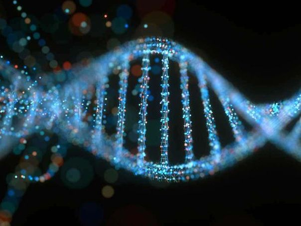 DNA & MRNA