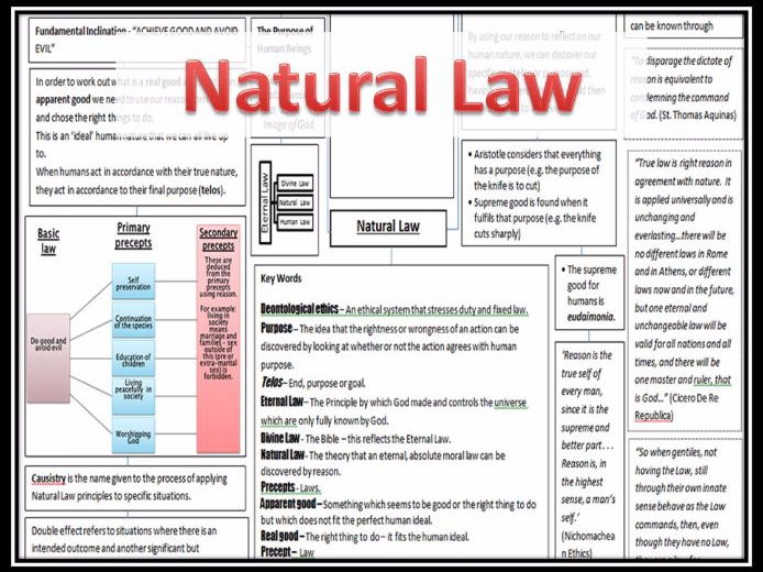 natural law Essay Examples