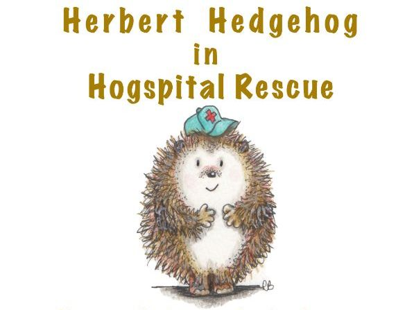 Hedgehog Protection  - Powerpoint Presentation - Information and Activities for children aged 5 - 11