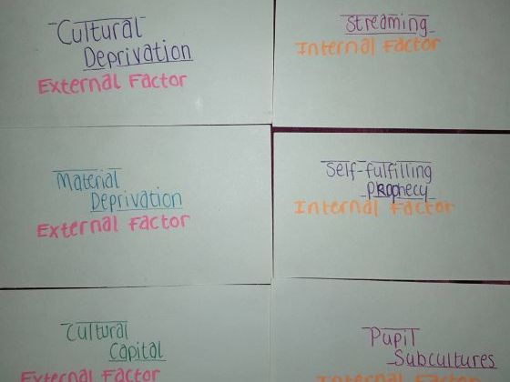 Sociology Flash-card game