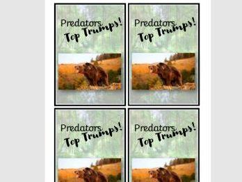 Predator Educational Game