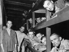 Life in the Concentration Camps Lesson