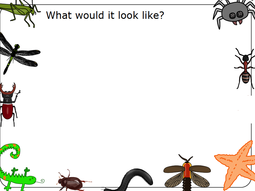 Design a 'bugtastic' recipe - Insect Protein - Video and worksheet