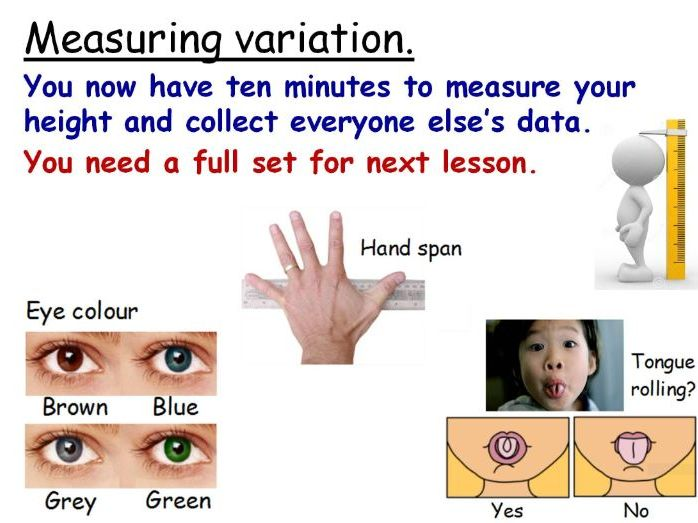 Variation: Continuous, Discontinuous & Hybrids Year 7 Lesson PowerPoint (KS3 7Da) Ecosystems topic