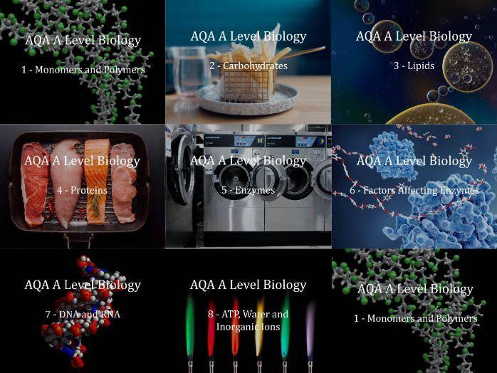 AQA A Level Biology Presentations Chapter 1 - Biological Molecules