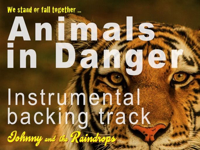 Animals in Danger | Backing track