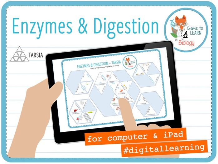 Enzymes and digestion - Digital Tarsia (KS3/4)