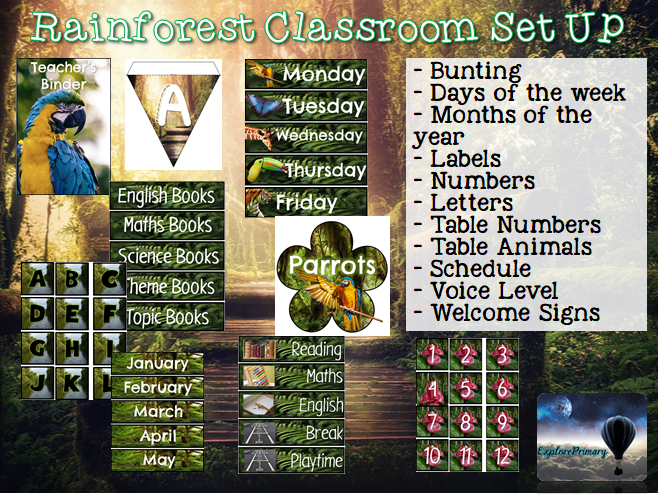 Rainforest Classroom Set Up - Decor