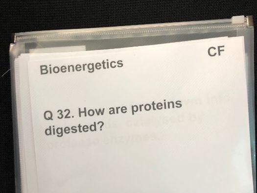 Accessible AQA Bioenergetics Quiz Cards